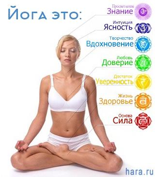 Йога курс онлайн для всех